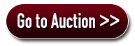 Go To auction